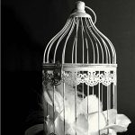 A birdcagecake is a fun celebration cake to make for birthdays, celebrations to the wedding cake. The options for design variations are plenty from simple, floral, rustic to vintage. It's can be a cake topper, a cake or a mini cake on top fo a multi-tiered cake.
