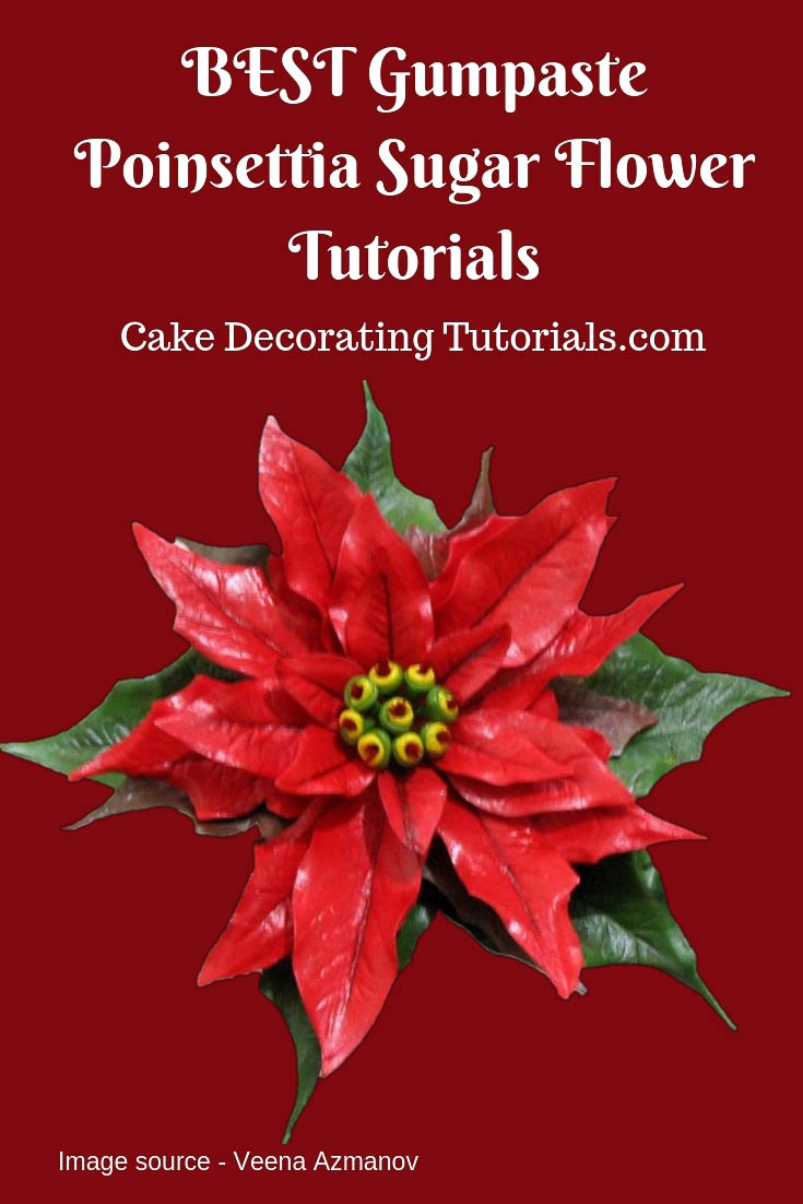 Learn to make perfect gumpaste poinsettia sugar flowers with these amazing video and step by step picture tutorials.