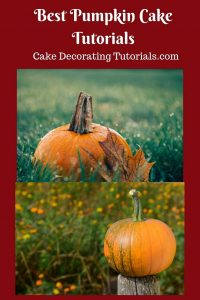 Five Best Pumpkin Cake Tutorials from around the web.