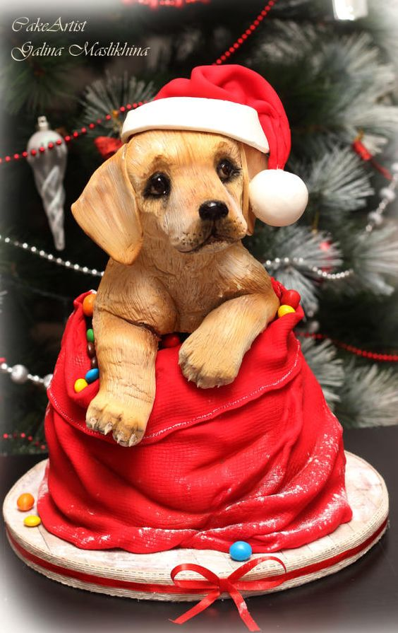A cute christmas theme brown dog cake or puppy cake in a santa bag