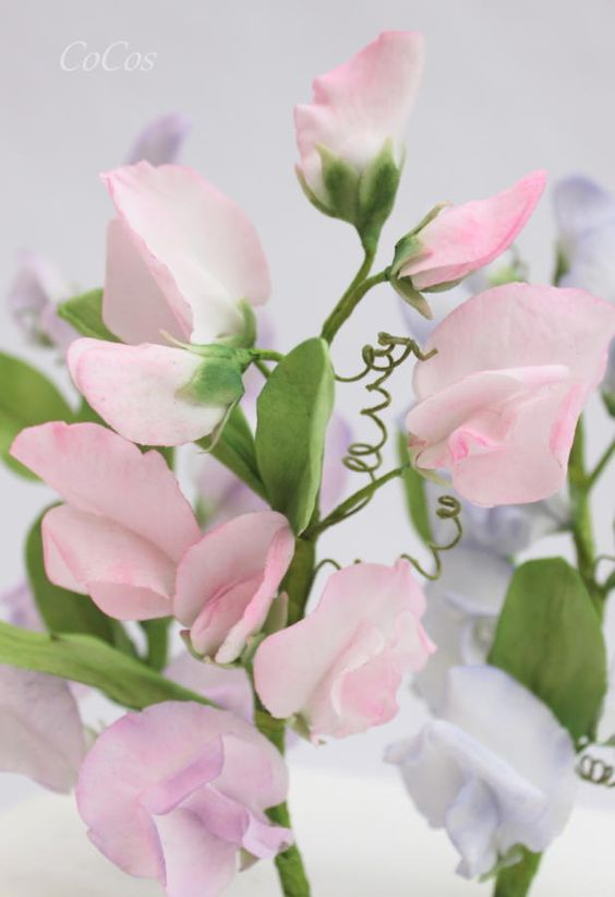 Realistic looking light pink sweet pea flowers and leaves made of gumpaste
