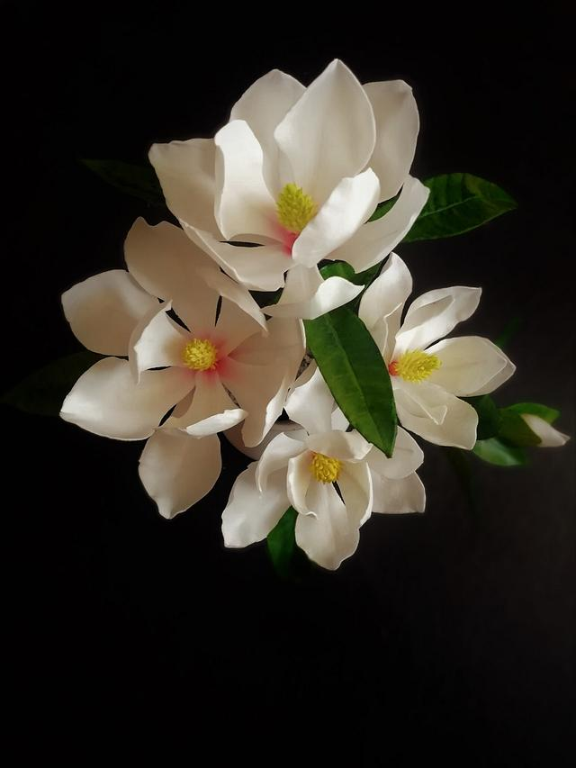 Spray of magnolia flowers made of gumpaste for cake decorating