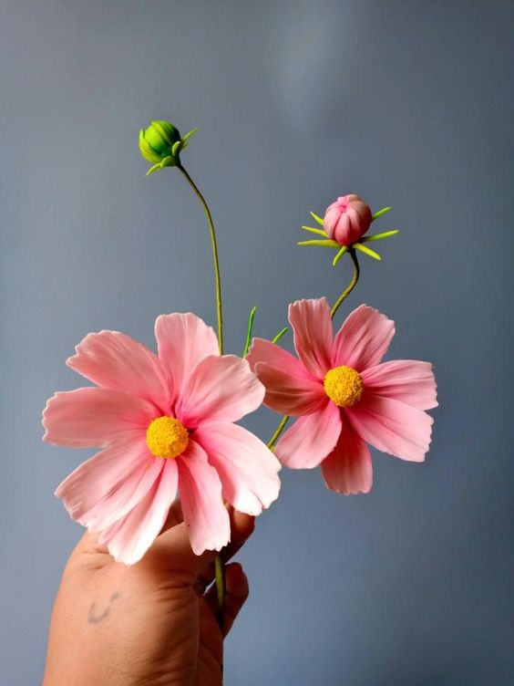pink cosmos flowers with yellow center bud and green branches made of sugar