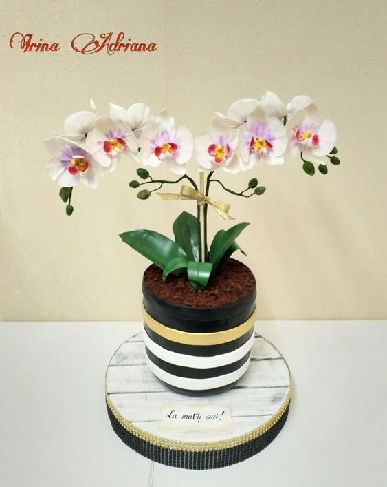 a pot cake with orchids of sugar growing in it
