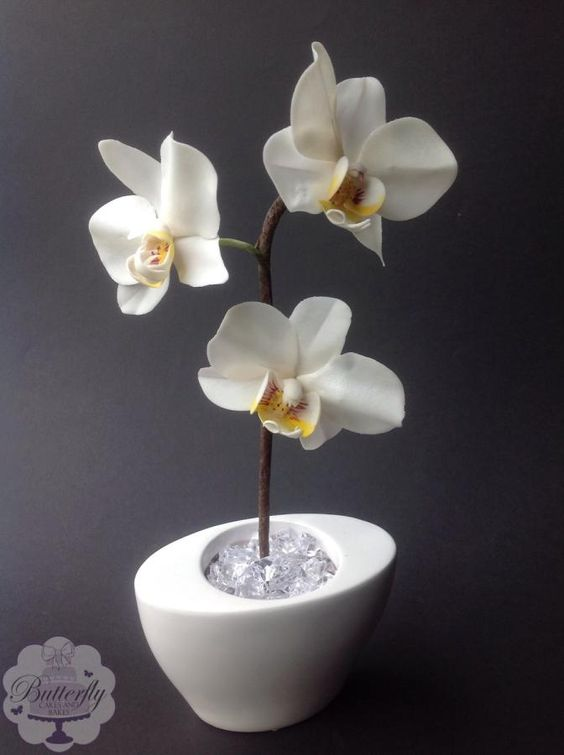fondant or sugar paste made orchids on a brown sugar branch