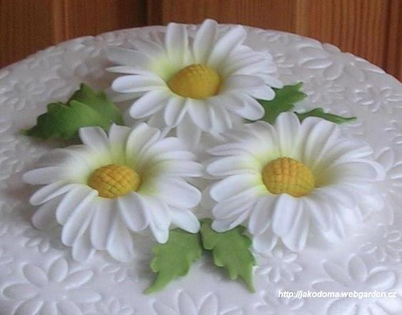 white and yellow with green leaf daisies